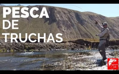 TRUCHA FISHING 🎣🎣, Like Beautiful Valley Fishing, 😱😱PESCA WITH MOSCA, PESCADOR, FLY FISHING